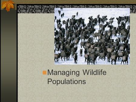 Managing Wildlife Populations. Next Generation Science/Common Core Standards Addressed! Use mathematical and/or computational representations to support.