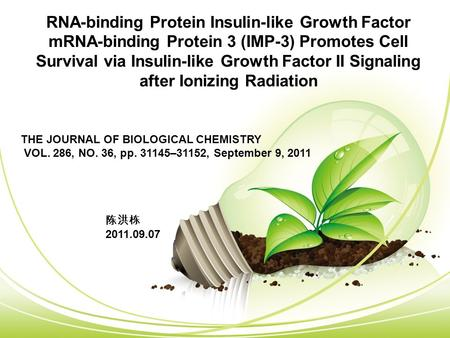 RNA-binding Protein Insulin-like Growth Factor mRNA-binding Protein 3 (IMP-3) Promotes Cell Survival via Insulin-like Growth Factor II Signaling after.