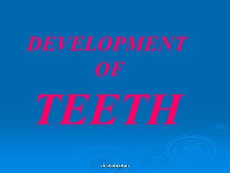 Dr shabeel pn DEVELOPMENT OF TEETH. DEVELOPMENT OF TEETH INTRODUCTION The morphogenesis of teeth and development of dentition involve a number of closely.