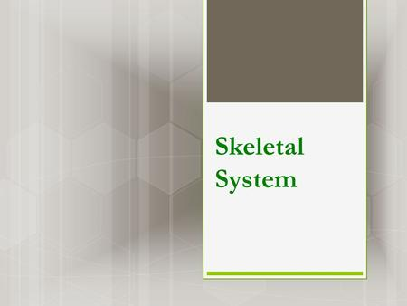 Skeletal System. What is the skeletal system?  Skeletal system consists of bones, teeth, joints, & structures that connect bones to other bones or muscles.