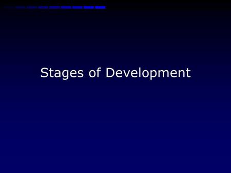 Stages of Development Overview Development of the embryo is broken into 3 Trimesters each with 12 weeks Up to the 9 th week=embryo Beyond 9 th week=fetus.