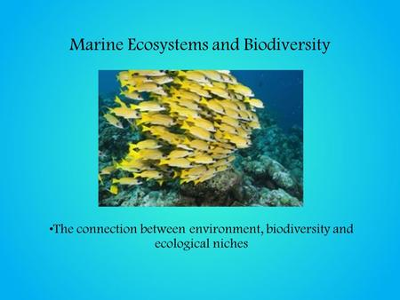 Marine Ecosystems and Biodiversity The connection between environment, biodiversity and ecological niches.