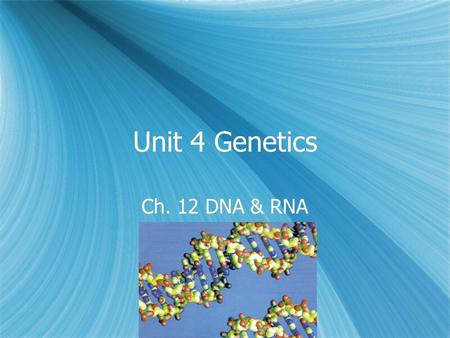 Unit 4 Genetics Ch. 12 DNA & RNA.