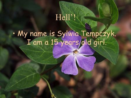 Hell'! My name is Sylwia Tempczyk. I am a 15 years old girl.