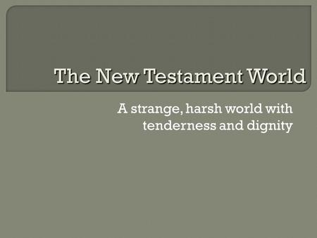 A strange, harsh world with tenderness and dignity The New Testament World.