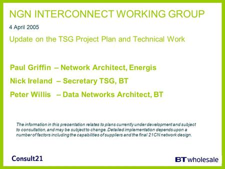 NGN INTERCONNECT WORKING GROUP 4 April 2005 Update on the TSG Project Plan and Technical Work Paul Griffin – Network Architect, Energis Nick Ireland –