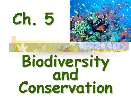 Ch. 5 Biodiversity <strong>and</strong> Conservation Biodiversity <strong>and</strong> Conservation.