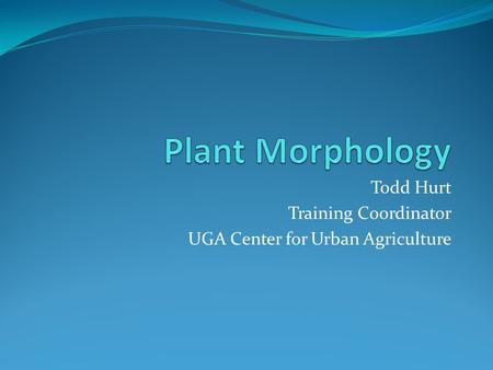 Todd Hurt Training Coordinator UGA Center for Urban Agriculture