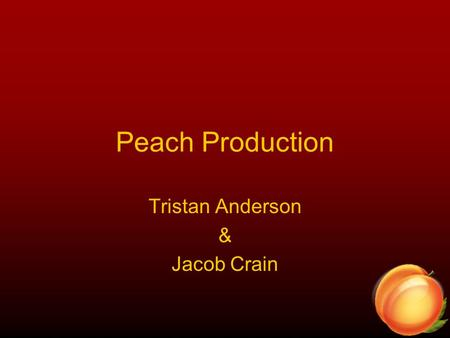 Peach Production Tristan Anderson & Jacob Crain. Stages of a Peach The first stage is Dormancy. No visible things on outside On the inside, Chemical Processes.