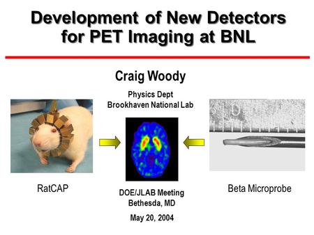 Development of New Detectors for PET Imaging at BNL DOE/JLAB Meeting Bethesda, MD May 20, 2004 Craig Woody Physics Dept Brookhaven National Lab RatCAPBeta.