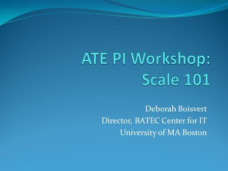 Deborah Boisvert Director, BATEC Center for IT University of MA Boston.