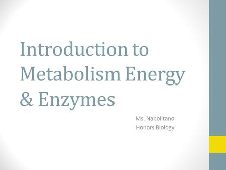 Introduction to Metabolism Energy & Enzymes Ms. Napolitano Honors Biology.