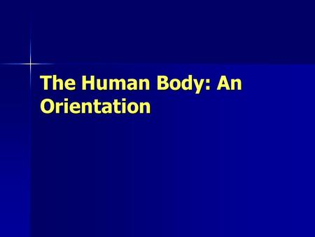 The Human Body: An Orientation.  Physiology/Intro%20to%20Anatomy% 20and%20Physiology/TheAmazingHu manBody.mov