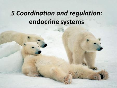 5 Coordination and regulation: endocrine systems.
