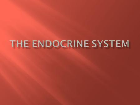  The Endocrine System controls many of the bodies daily activities as well as long term changes like development.