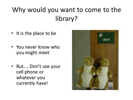 Why would you want to come to the library? It is the place to be You never know who you might meet But…. Don't use your cell phone or whatever you currently.