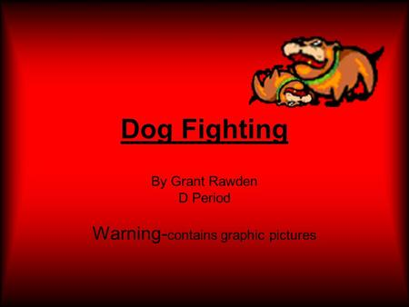 Dog Fighting By Grant Rawden D Period Warning- contains graphic pictures.