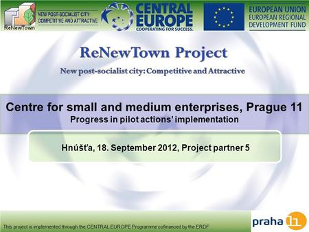 Centre for small and medium enterprises, Prague 11 Progress in pilot actions' implementation This project is implemented through the CENTRAL EUROPE Programme.