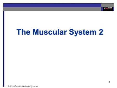 EDU2HBS Human Body Systems 1 The Muscular System 2.
