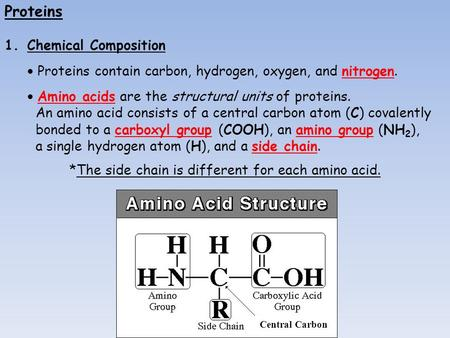 Proteins 1.Chemical Composition  Proteins contain carbon, hydrogen, oxygen, and nitrogen.  Amino acids are the structural units of proteins. An amino.