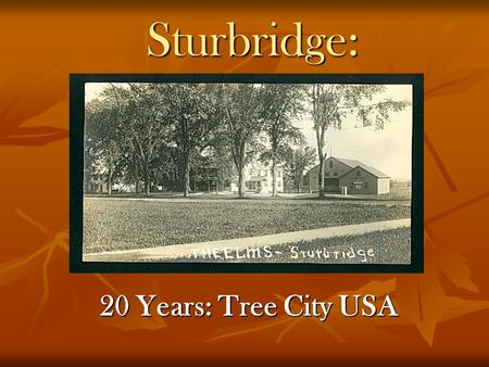 Sturbridge: 20 Years: Tree City USA. Tree Warden: Tom Chamberland First Elected 1984, appointed from 1987 Past President, Worcester County Tree Wardens.