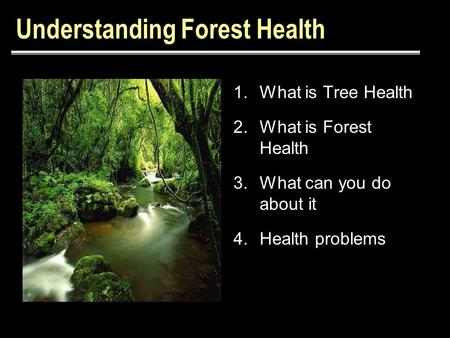 Understanding Forest Health 1.What is Tree Health 2.What is Forest Health 3.What can you do about it 4.Health problems.