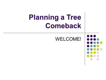 Planning a Tree Comeback WELCOME!. Overview of Today's Meeting Learn from other communities Learn about the City's tree programs Hear your concerns around.