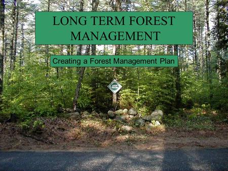 LONG TERM FOREST MANAGEMENT Creating a Forest Management Plan.