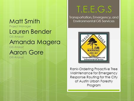 T.E.E.G.S Transportation, Emergency, and Environmental GIS Services Matt Smith Project Manager Lauren Bender GIS Analyst Amanda Magera GIS Analyst Aaron.