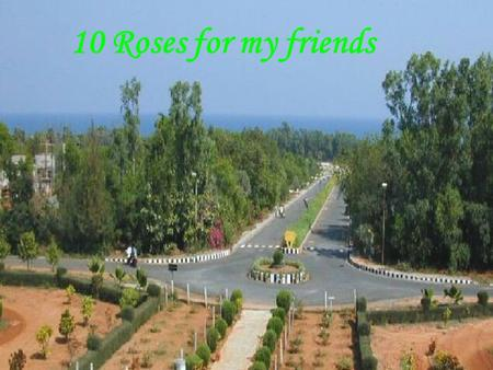 10 Roses for my friends. If you receive this … because you're a special person to me.