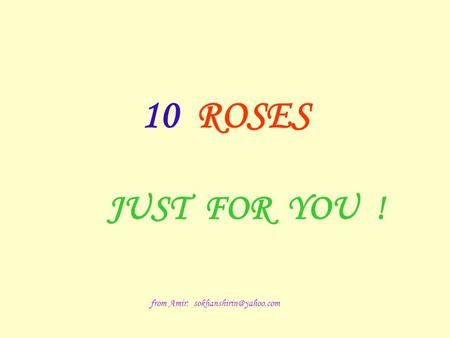 10 ROSES JUST FOR YOU ! from Amir: