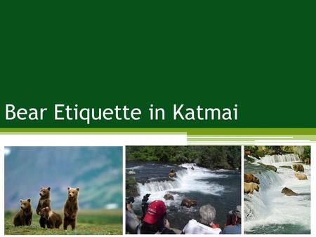 Bear Etiquette in Katmai. Problem: impacts to wildlife; crowding Management Strategies: harden the resource; increase supply; reduce the impact of use;