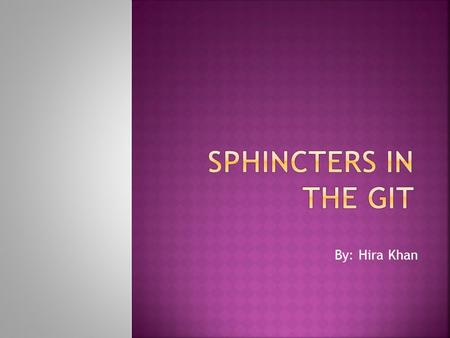 By: Hira Khan. A sphincter is usually a circular muscle, that normally maintains constriction of a natural body passage and which relaxes as required.