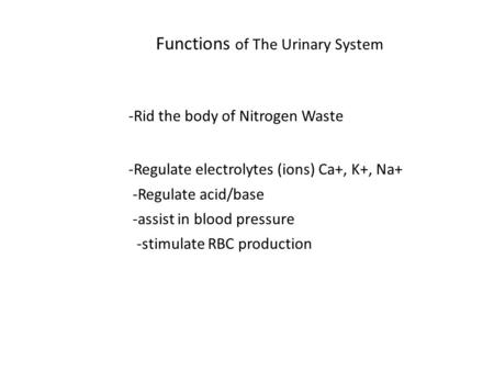 Functions of The Urinary System -Rid the body of Nitrogen Waste -Regulate water balance -Regulate electrolytes (ions) Ca+, K+, Na+ -Regulate acid/base.
