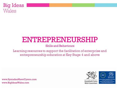 Learning resources to support the facilitation of enterprise and entrepreneurship education at Key Stage 4 and above ENTREPRENEURSHIP Skills and Behaviours.