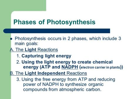 Phases of Photosynthesis Photosynthesis occurs in 2 phases, which include 3 main goals: A. The Light Reactions 1. Capturing light energy 2. Using the light.