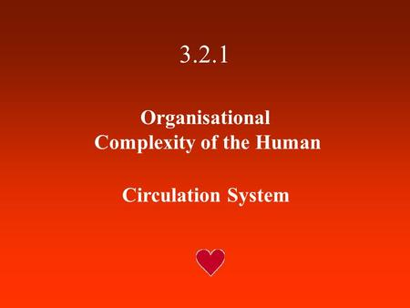 3.2.1 Organisational Complexity of the Human Circulation System.