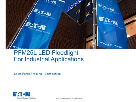 PFM25L LED Floodlight For Industrial Applications