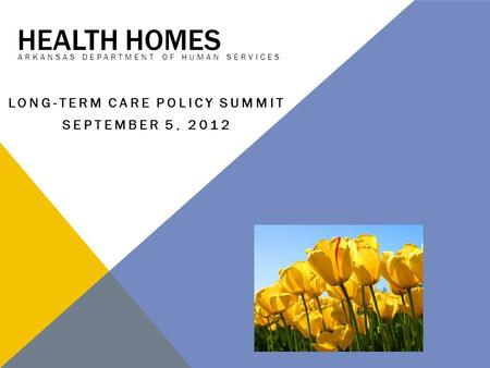 HEALTH HOMES ARKANSAS DEPARTMENT OF HUMAN SERVICES LONG-TERM CARE POLICY SUMMIT SEPTEMBER 5, 2012.
