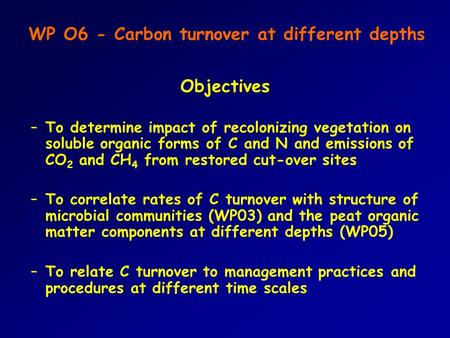 WP O6 - Carbon turnover at different depths Objectives –To determine impact of recolonizing vegetation on soluble organic forms of C and N and emissions.