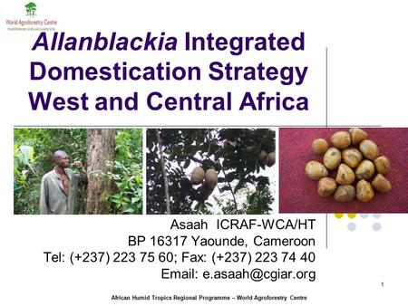 African Humid Tropics Regional Programme – World Agroforestry Centre 1 Allanblackia Integrated Domestication Strategy West and Central Africa Asaah ICRAF-WCA/HT.