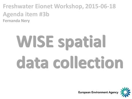 Freshwater Eionet Workshop, 2015-06-18 Agenda item #3b Fernanda Nery WISE spatial data collection.