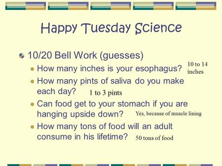 Happy Tuesday Science 10/20 Bell Work (guesses) How many inches is your esophagus? How many pints of saliva do you make each day? Can food get to your.