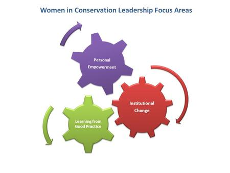 Women in Conservation Leadership Focus Areas Institutional Change Learning from Good Practice Personal Empowerment.
