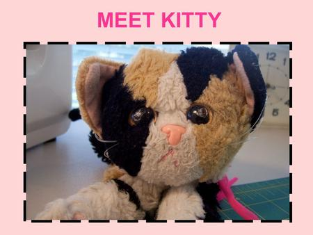 MEET KITTY Kitty loves to sew! OH NO! Kitty ran out of fabric!