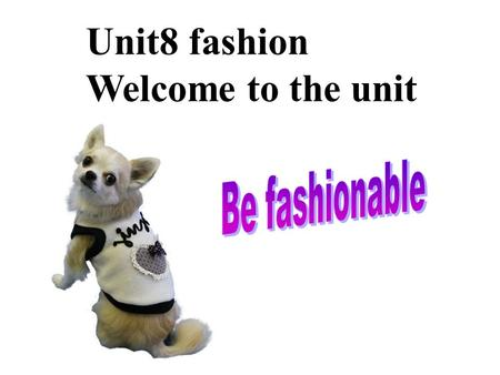 Unit8 fashion Welcome to the unit. red green yellowblue pink purple orangegrey white black brown.