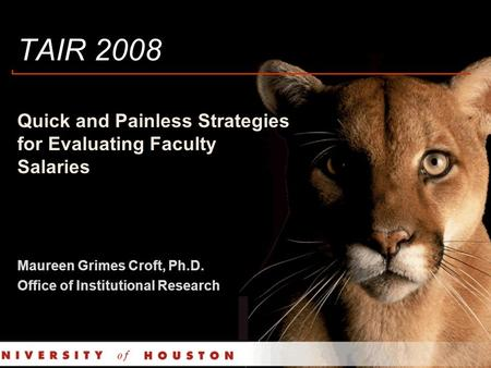 TAIR 2008 Quick and Painless Strategies for Evaluating Faculty Salaries Maureen Grimes Croft, Ph.D. Office of Institutional Research.
