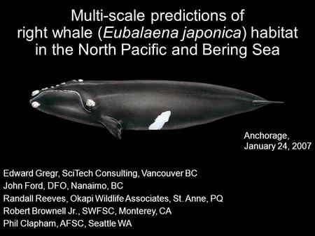 Multi-scale predictions of right whale (Eubalaena japonica) habitat in the North Pacific and Bering Sea Edward Gregr, SciTech Consulting, Vancouver BC.
