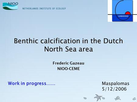 Benthic calcification in the Dutch North Sea area Frederic Gazeau NIOO-CEME Work in progress…… Maspalomas 5/12/2006.