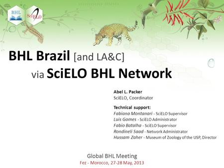 Global BHL Meeting Fez - Morocco, 27-28 May, 2013 BHL Brazil [and LA&C] via SciELO BHL Network Abel L. Packer SciELO, Coordinator Technical support: Fabiana.
